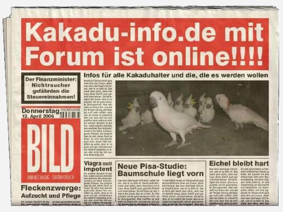 [Bild: bild-kakadu-info1.jpg]